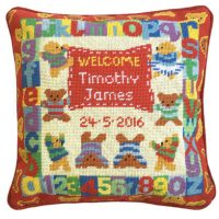 Needlepoint sampler kit